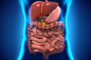 Gi – Gastroenterology