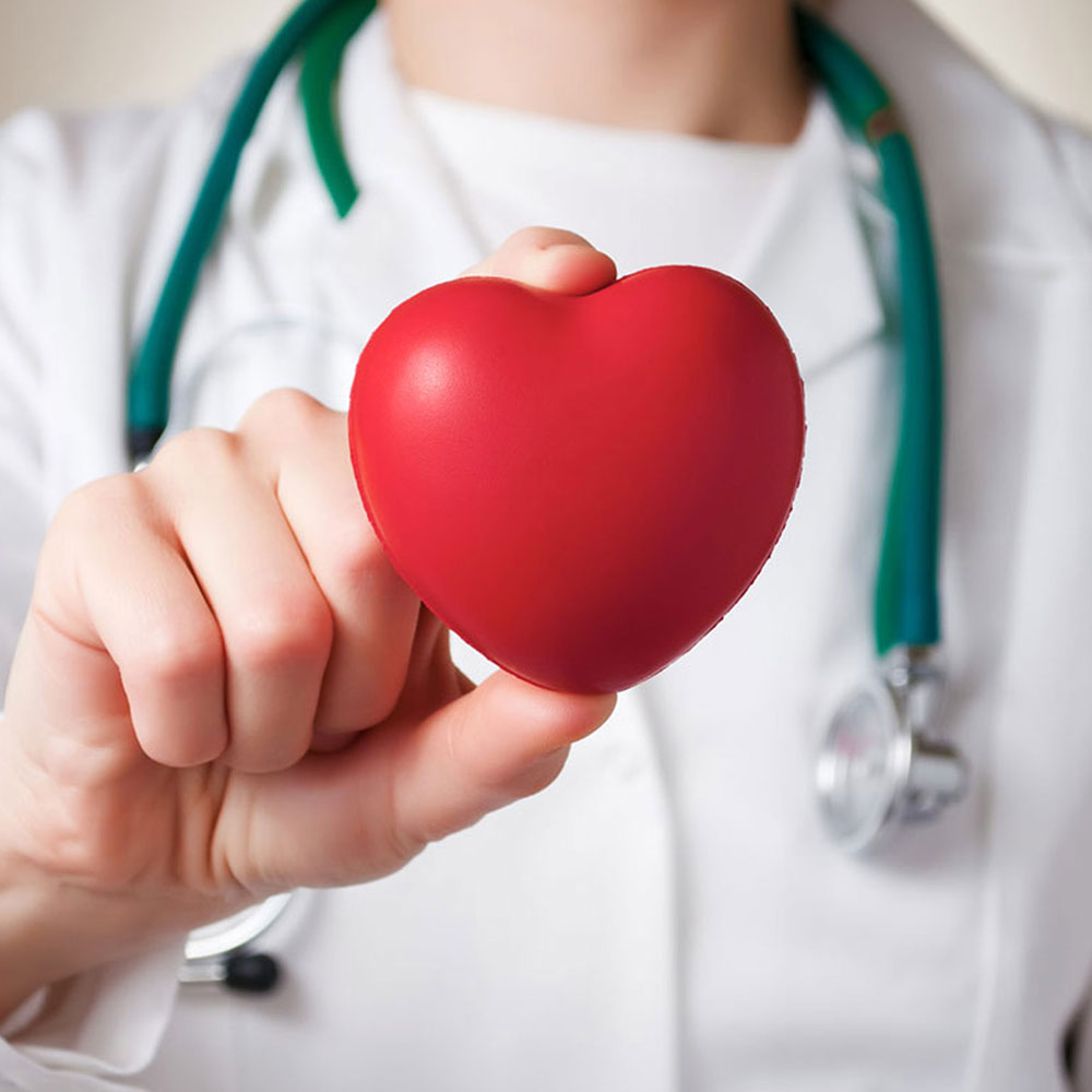What is Cardiology?